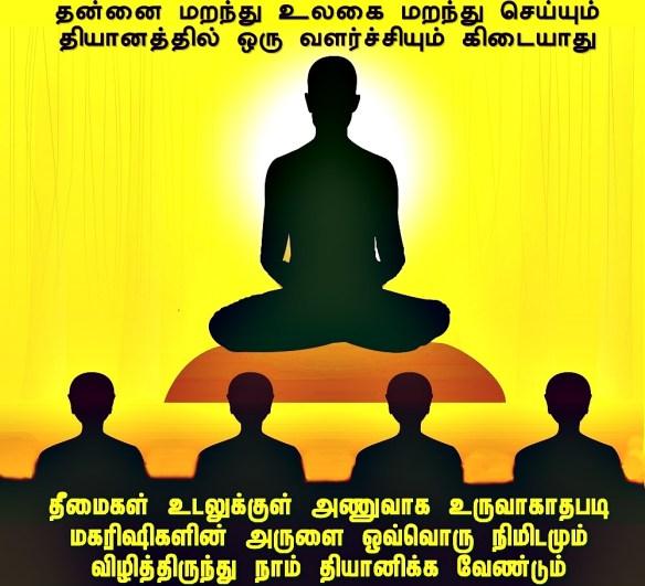 transitional meditations