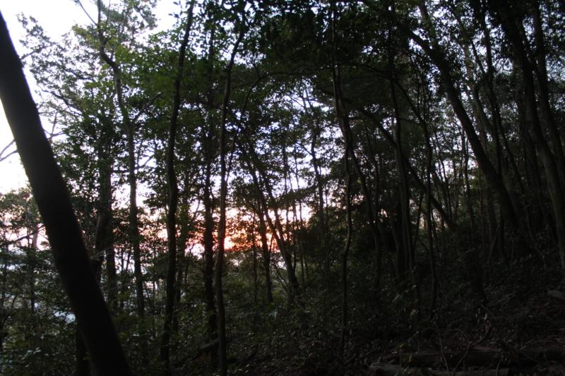 野登呂山登山道からの景色
