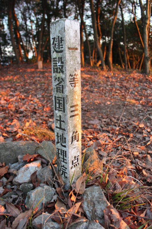 野登呂山の一等三角点