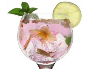 III. Gin Tonic lehiaketa hurrengo asteburuan ere