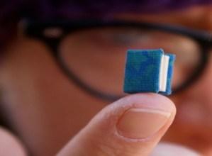 Nanoipuin gustokoena aukeratzeko botazioa zabalik dago