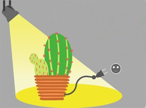 """Energia-modeloari buruzko hausnarketa helburu duen """"Kaktusa Bizirik"""" antzezlana eskainiko dute"""