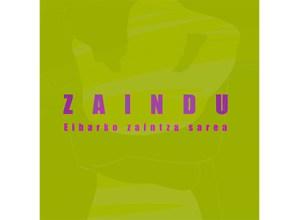 'Zaindu' sortu dute, Eibarko Zaintza Sarea
