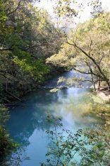 IMG_3729 blue spring