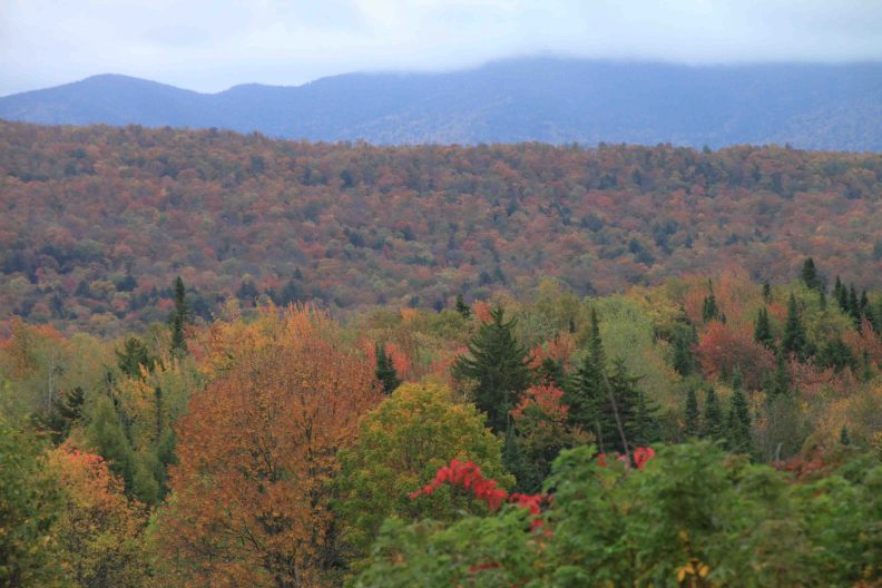 fall colors in adirondack park