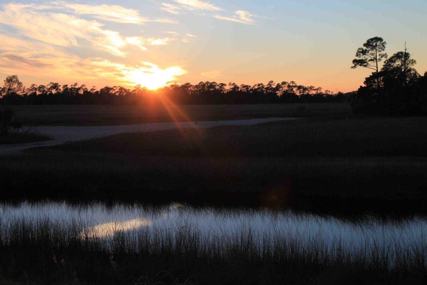 sunset at st. marks national wildlife refuge