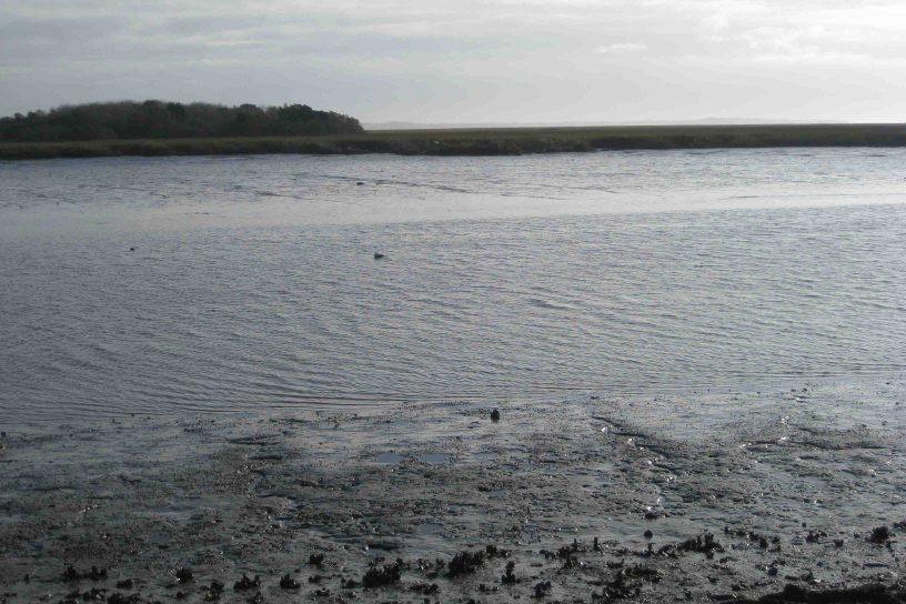 marshes of glynn overlook park on Georgia's Colonial Coast