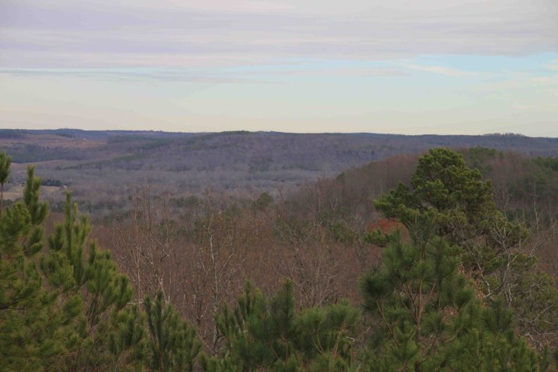 freedom hills overlook on the natchez trace