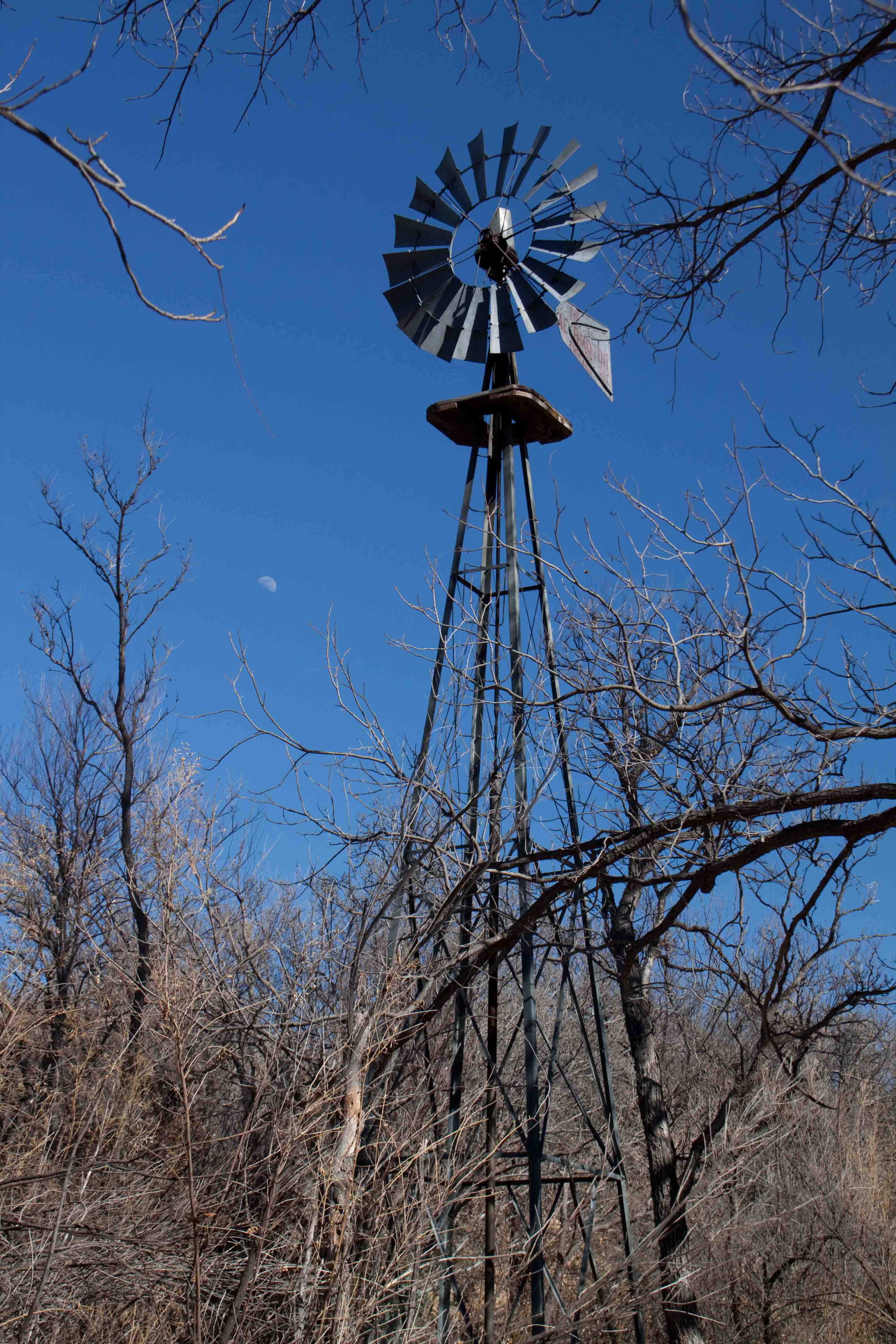 windmill in big bend national park