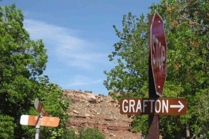 IMG_2516 grafton