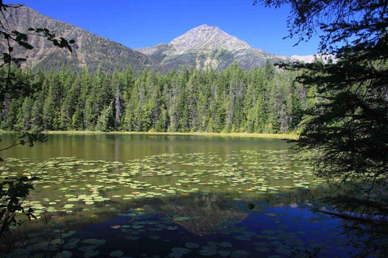 john's lake in glacier national park