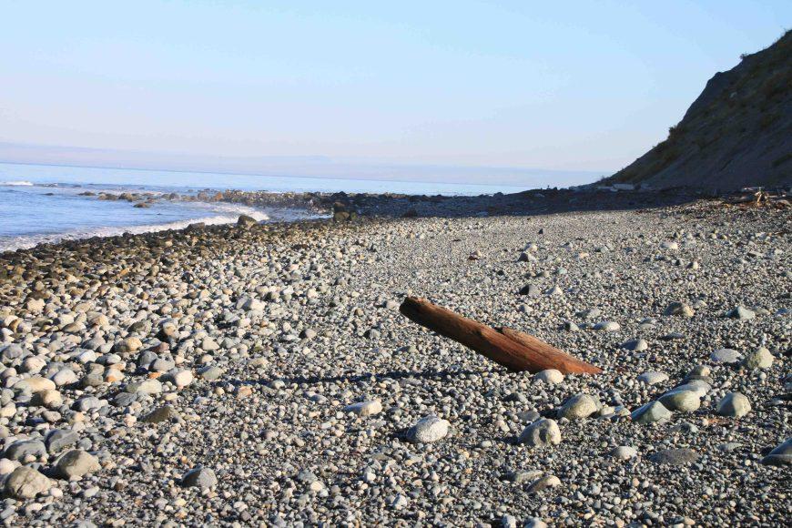 partridge point beach