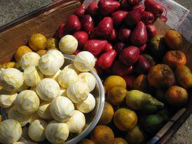 IMG_2973 fruit