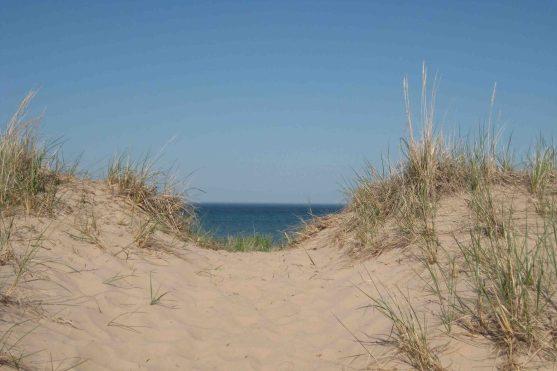 IMG_4358 sand dunes