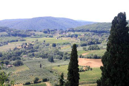 IMG_4333 montepulciano view