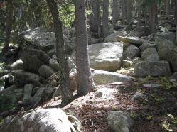 IMG_6102 boulder field