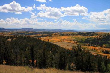 valley of aspen