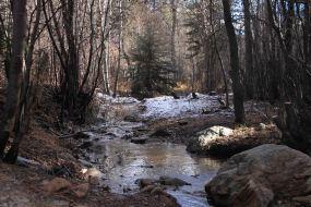 IMG_6908 creek