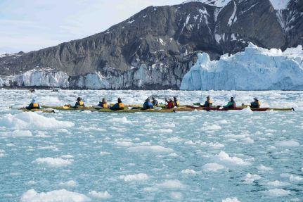 Artic-Paddle-01425 USE