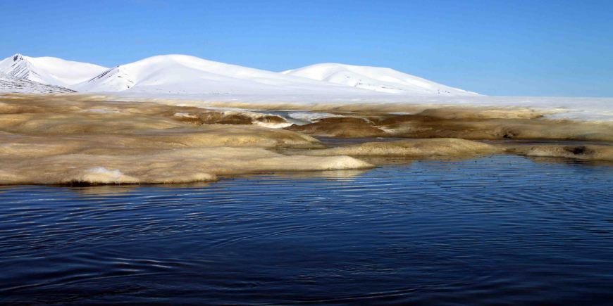 Bockfjorden