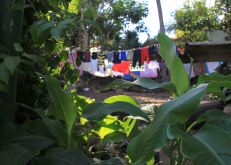 img_9719-backyard