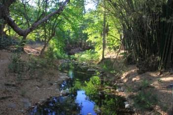 img_2288-creek