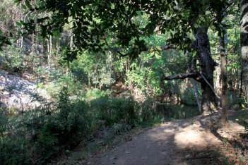 img_2292-path