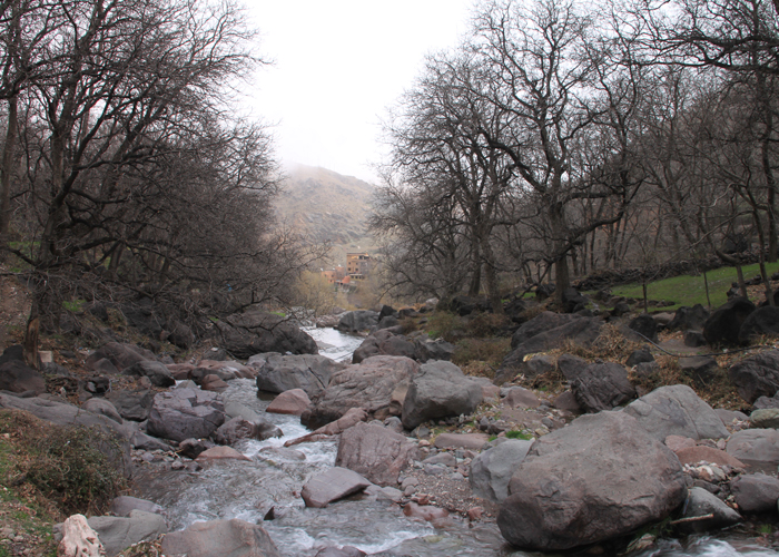 creek in the high atlas mountains