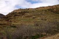 IMG_2676-terraces