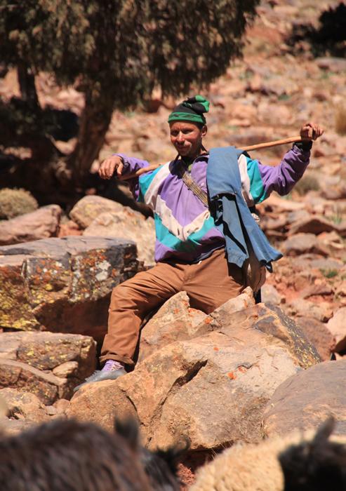 goat herder on tizi oudite trail