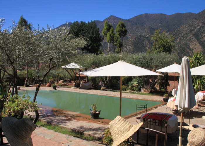 pool at chez momo
