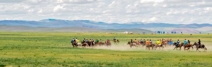 Tsenker Naadam Horse Race in Mongolia