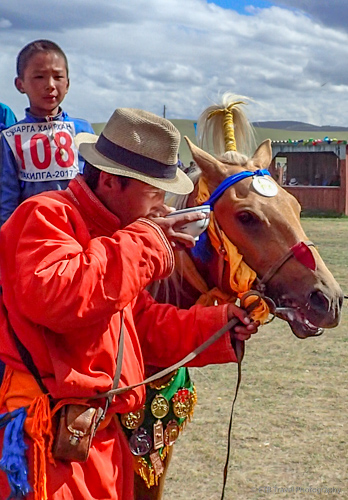drinking airag at naadam in mongolia