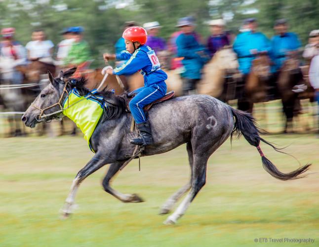 winner of the Tsenkher Naadam Horse Race