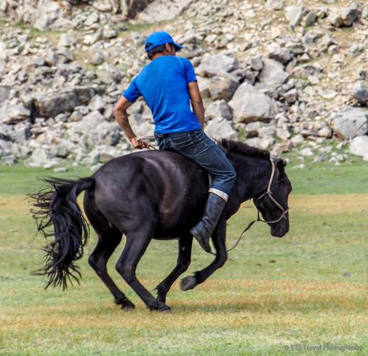 mongolian cowboy riding mare