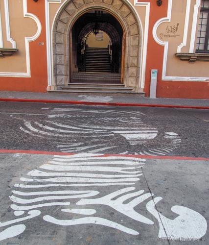 zebra crosswalk