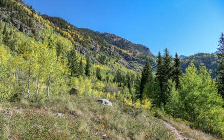 Bighorn Creek Trail