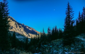 Hope Lake Trail