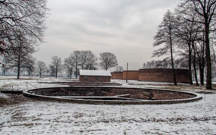 sewer plants at Auschwitz