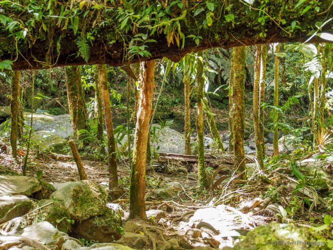 Three Waterfalls Trail