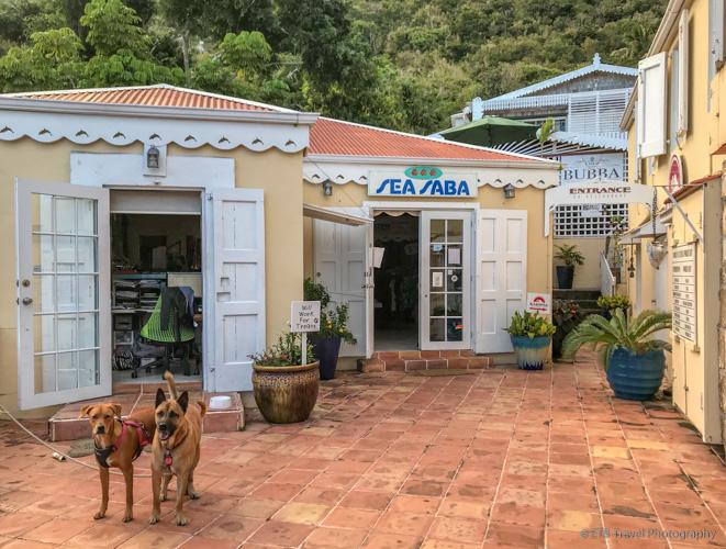 dive shop in Saba