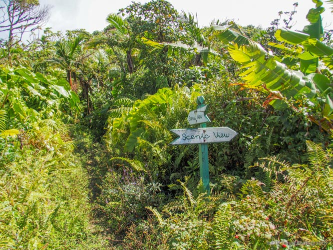trail signs in saba