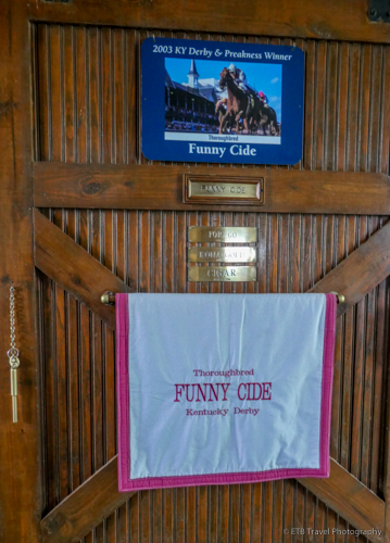 Funny Cide's Stall at the Kentucky Horse Park
