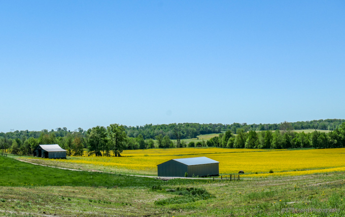 barn near Nashville