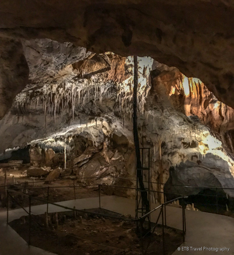 tree root in pech merle cave