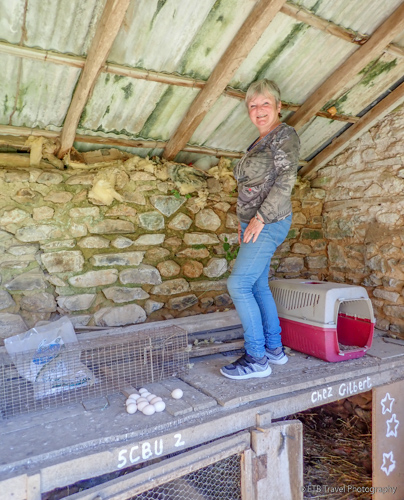Linda and lots of eggs in correze