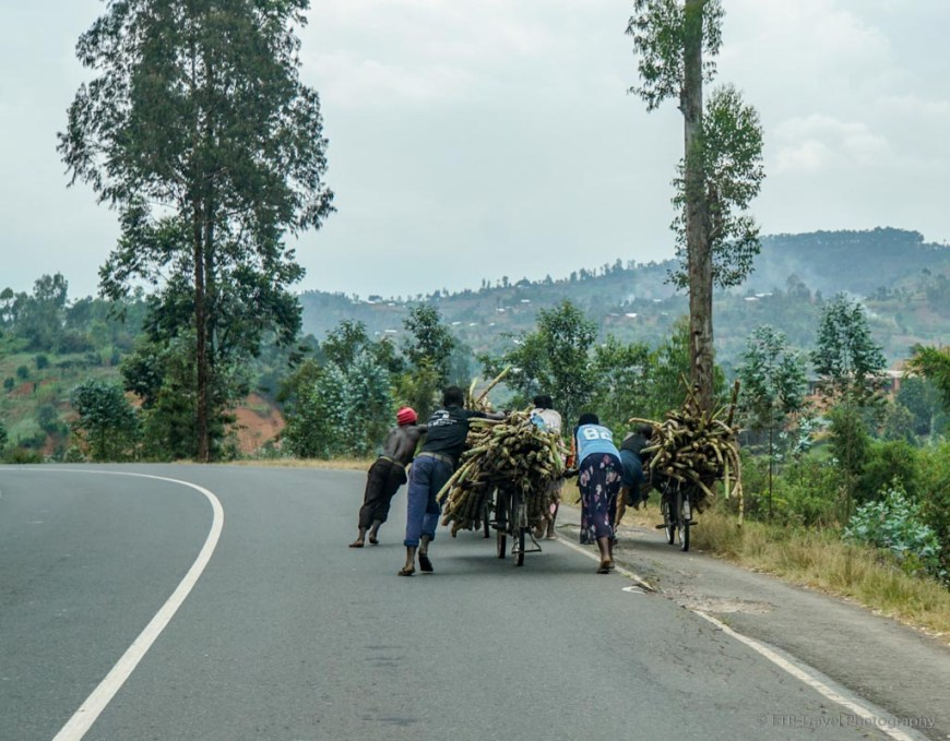 pushing cane in rwanda
