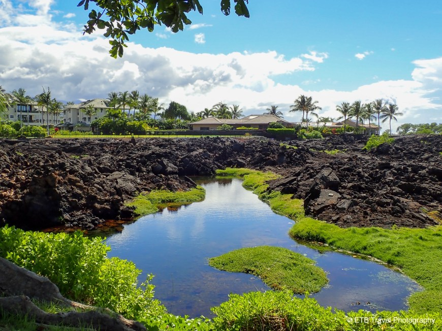 Anchialine Ponds Preservation Area on the Kohala Coast