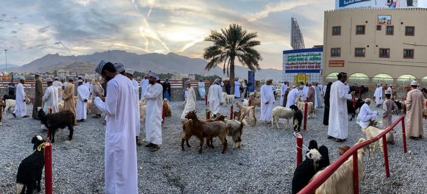 the goat market in nizwa