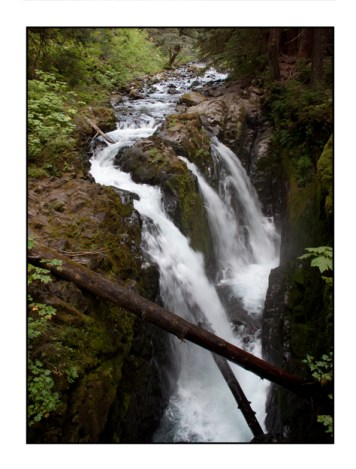 photographic note card, waterfall in Olympic National Park